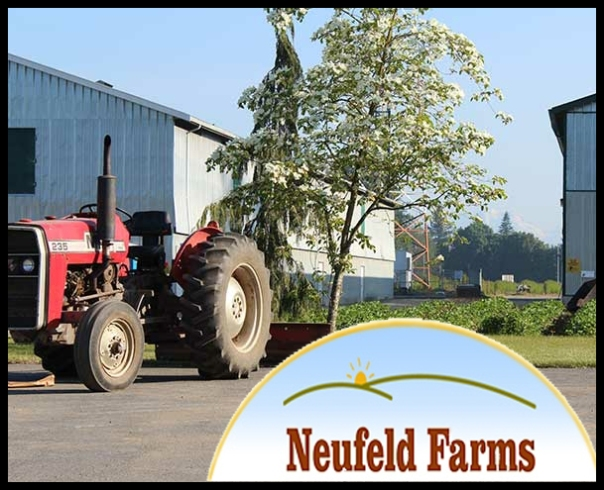 neufeld_farms